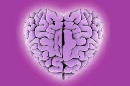 cerebro-corazón_edi